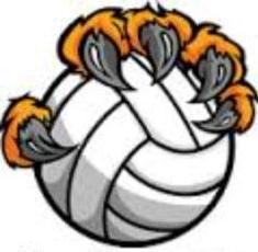 VOLLEYBALL TIGER.jpg